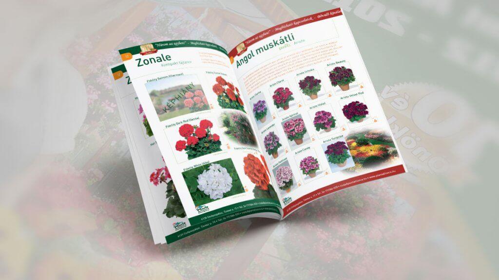 Plant-Alliance-beliv