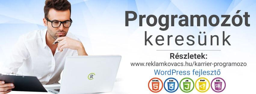 rk-allas-banner-wp-webfejleszto
